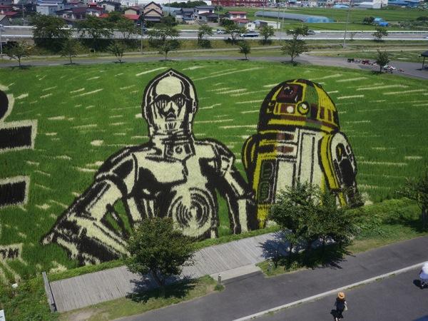 Star Wars rice art1